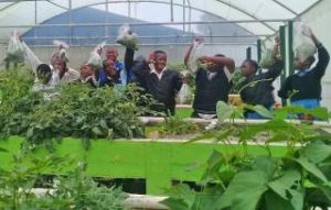 List Of Agricultural Colleges In South Africa